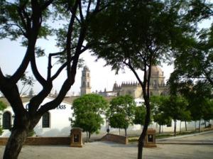 bodegas-catedral