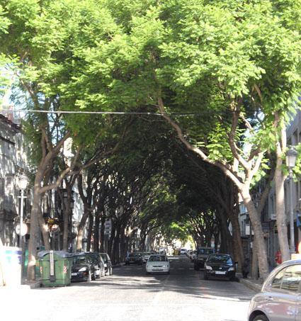 Calle Por-vera